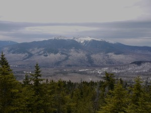 Northern Presidentials