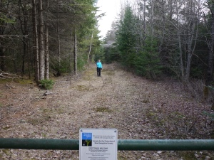 start of trail